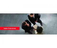 Sales Executive Required in Sharjah