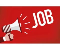 Male and Female Arabic Receptionist Required for Liberty Dental Clinic Abu Dhabi