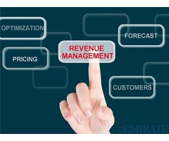 Revenue Manager Required for Well Reputed Hotel in Ajman