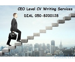 0508200128 Business CV Writing Services in Dubai for MD/CEO