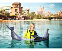 Atlantis dolphin bay tickets for sale in Dubai