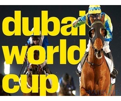 Dubai World Cup 2017 2Apron view Horse Racing Tickets for Sale