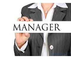 Urgently Required Showroom Manager in Dubai