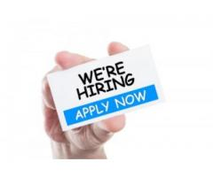 Staff Required for Group of Companies