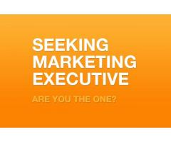 Marketing Executive Required for University in Ra's Al Khaimah