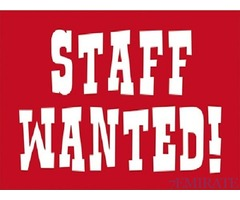 Immediately Required Experienced and Qualified Staff for School in Dubai