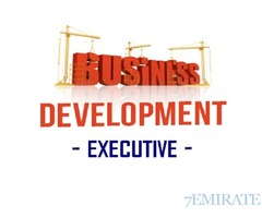 Business Development Executive Required for Consultancy Company