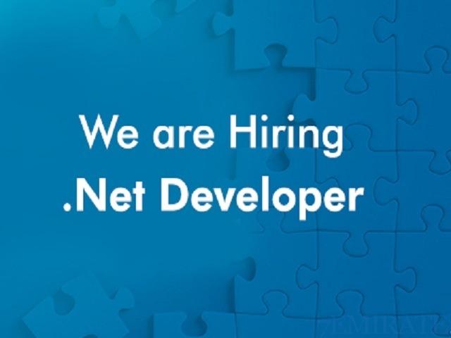 Urgently required vb6.0/Net developer in Dubai