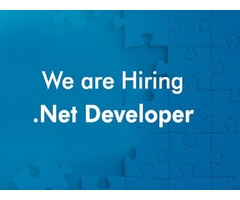 Urgently required vb6.0/Net developer in Dubai