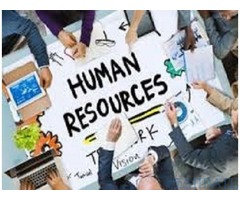 Looking for HR Assistant Required in Ras Al Khaimah