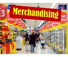 Required Merchandiser with Valid UAE Driving License in Dubai