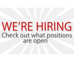 Receiving Clerk Required for Four Star Hotel in Sharjah