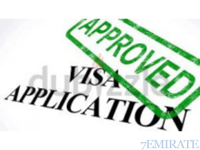 Freelance Visas, Immigration Services & Business Consultancy Services
