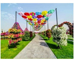 Tickets for Dubai Butterfly Garden for Sale