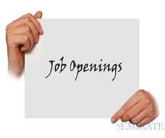 Urgently seeking for an accountant and Security guard