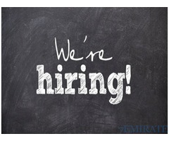 Urgently Required Admin Assistant and Drive in Abu Dhabi