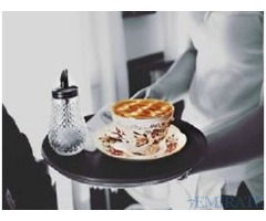Urgently Required Waiter and Waitress in Dubai