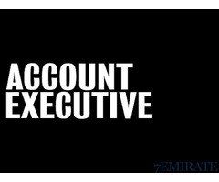 Accounts Executive Required in Dubai
