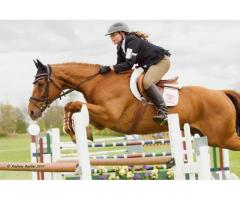 Royal Equestrian Club in Dubai open for All Ages