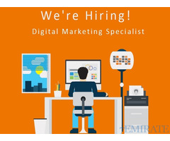 Digital Marketing Specialist Required for E-commerce Company in Dubai