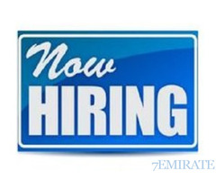 Looking for Data Entry cum Office Assistant in Dubai