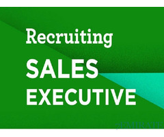 Sales Executive Required for Company in Dubai