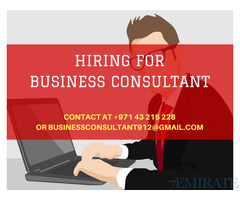 Looking to Hire Business Setup Consultant in Dubai