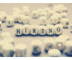 Secretary Cum Receptionist Required for Liftex FXC in Dubai