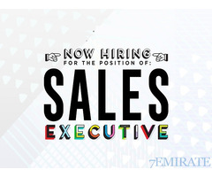 Urgently Required Sales Executive Digital Marketing Agency in DUbai