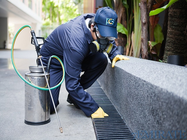 Pest Control Service Provider in Sharjah
