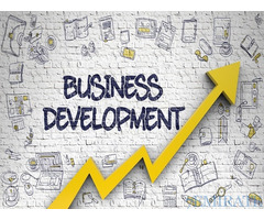 Urgently Wanted Business Development Manager for Company in Dubai