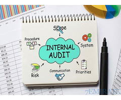 Internal Audit Director Required for Gulf Integrity Management Consultancy