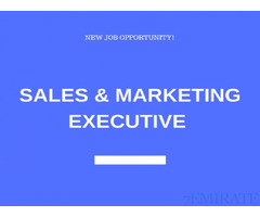 Sales & Marketing Executive Required for Company in Mussafah