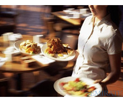 Waitress Required for SPN International Restaurant LLC in Dubai