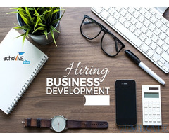 Business Development Executive Required for VAM Systems Inc in Sharjah