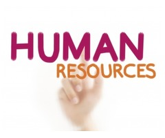 HR Assistant Required for a Company in Sharjah
