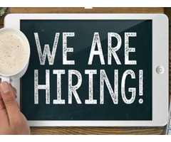 We are looking for a Warehouse Coordinator in Dubai