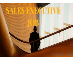 Sales Executive Cum Outdoor Merchandiser Required for Company in Dubai