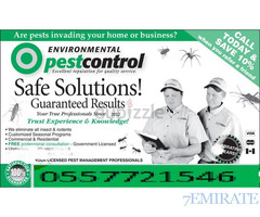Cheap and Professional Pest Control Service in Dubai and UAE 0527776862