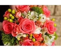 Designer Required for Flower Shop in Abu Dhabi