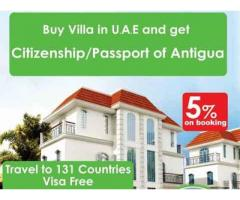 Investment Program with Citizenship
