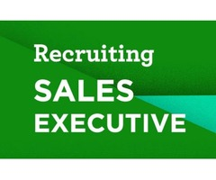 Walk in Interview for Sales Executive in Dubai