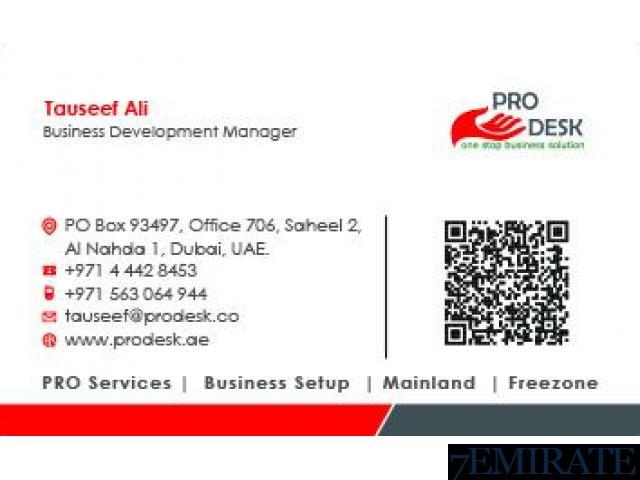 PROFESSIONAL LICENSE IN DUBAI-CONSULTING & SERVICE LICENSE