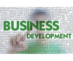 Business Development Executive Required for US Company
