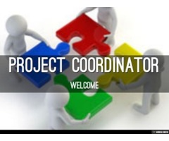 Urgently Required Project Coordinator in Abu Dhabi