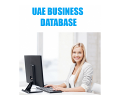UAE Database for Sale