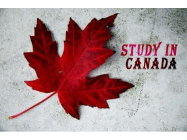 how to get job in canada from uae