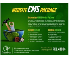High Quality Wordpress and Joomla CMS Website Designing