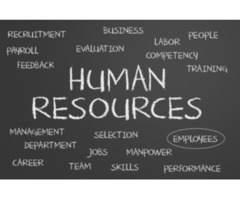 HR & Admin Officer Required in Sharjah