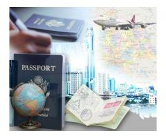 Quick Visa Process Serivce